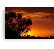 Savanna meets Lincolnshire Canvas Print