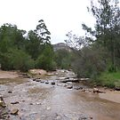 Crossing the river to find the walking track! 'Newnes' Blue Mountains, N.S.W.  by Rita Blom