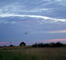Lincolnshire Landscape by slimdaz