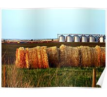 The Canadian Prairies Poster