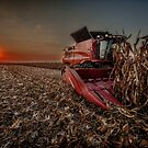 Case IH 7140 by Steve Baird