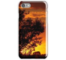 Savanna meets Lincolnshire iPhone Case/Skin