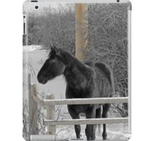 Cold But Hardy iPad Case/Skin