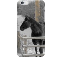 Cold But Hardy iPhone Case/Skin
