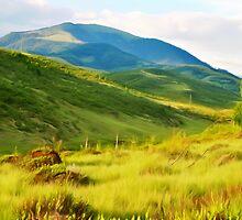 Green hills by MartinCapek