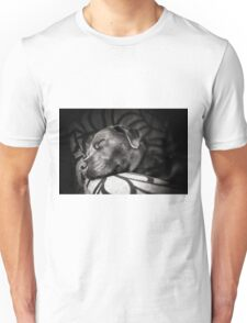 Sleepy Dog Unisex T-Shirt