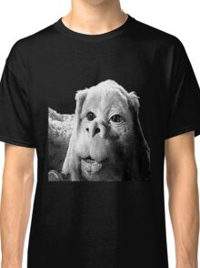 Falkor The Luck Dragon From The Neverending Story Design Classic T-Shirt
