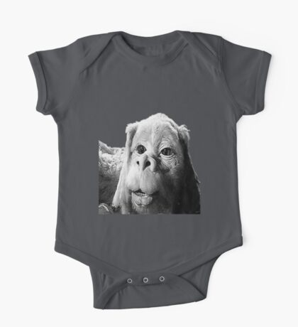 Falkor The Luck Dragon From The Neverending Story Design One Piece - Short Sleeve