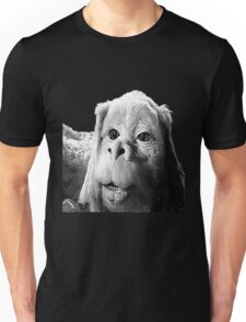 Falkor The Luck Dragon From The Neverending Story Design Unisex T-Shirt