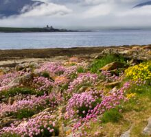 Island of Hoy. Spring Flowers from Ness Point, West Orkney. Scotland. Sticker