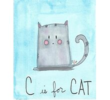C is for Cat Photographic Print