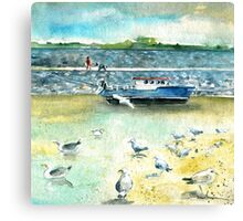 Seagulls In Ireland Canvas Print
