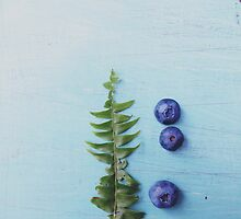 Blueberries and Fern Frond by Olivia Joy StClaire
