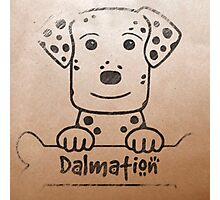 Dalmatian Pooch Photographic Print