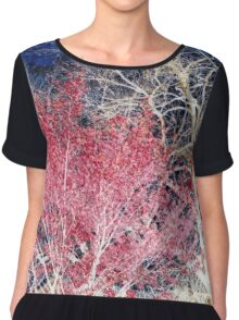 Red Leaves White Trees Blue Skies Chiffon Top