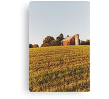 Golden Farm Canvas Print