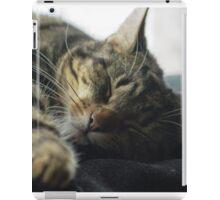 Sleeping Elsa Tabby Cat iPad Case/Skin