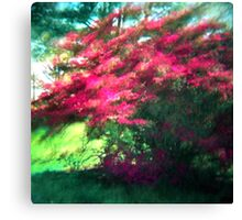 Spring Pink Sun Green Canvas Print