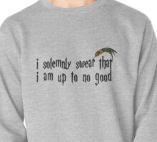 I solemnly swear that I am up to no good.  Pullover