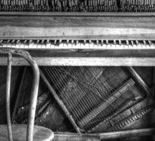 Norwich Piano, Hallet, Davis & Co from Boston Massachusetts Sticker