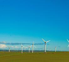 Cornish Windfarm by Michelle Lovegrove