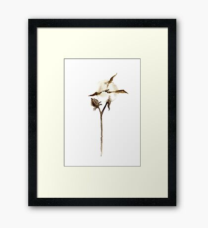 Cotton Flower Home Decoration Brown Wall Decor Framed Print