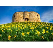 Cliffords Tower Spring Photographic Print