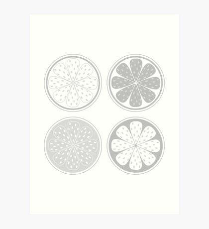 Citrus fruit slices isolated on white background. Stylized vector citrus slices isolated on white background Art Print