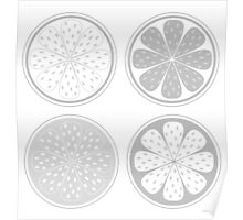 Citrus fruit slices isolated on white background. Stylized vector citrus slices isolated on white background Poster