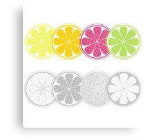 Citrus fruit slices in retro style isolated on white Metal Print