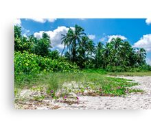 Beachfront Canvas Print