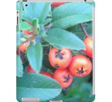 Cotoneaster 1 iPad Case/Skin