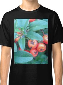 Cotoneaster 1 Classic T-Shirt