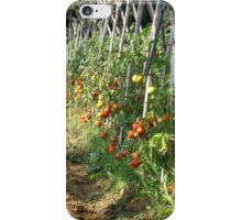 The fruit of the vine. iPhone Case/Skin