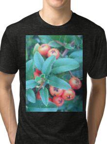 Cotoneaster 2 Tri-blend T-Shirt
