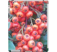 Cotoneaster 3 iPad Case/Skin