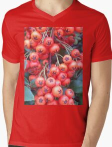 Cotoneaster 3 Mens V-Neck T-Shirt
