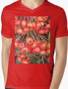 Cotoneaster 4 Mens V-Neck T-Shirt