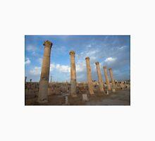 City greco-roman of Jerash Unisex T-Shirt