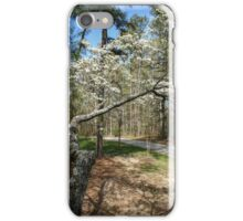 Almost Home iPhone Case/Skin