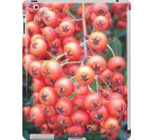 Cotoneaster 5 iPad Case/Skin