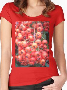Cotoneaster 5 Women's Fitted Scoop T-Shirt
