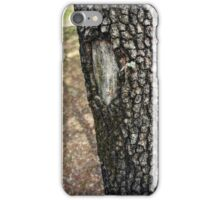 Mossy Branch iPhone Case/Skin