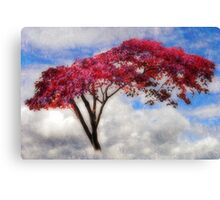 Red Tree in Summer Canvas Print