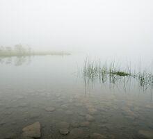 Lake of the Ercina, Lagos de Covadonga by PhotoBilbo