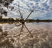 Cloud Reflections - Kilocowera Station by Malcolm Katon