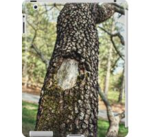 Moss-Covered Branches iPad Case/Skin