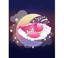 skitty snoozing Photographic Print