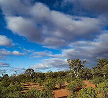 Colours of the Outback - Kilcowera Station by Malcolm Katon