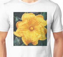 Squash Blossom 1 Unisex T-Shirt
